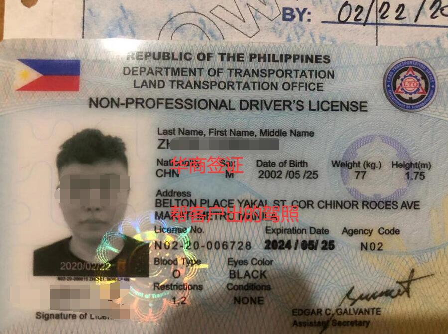 菲律宾驾照.jpg