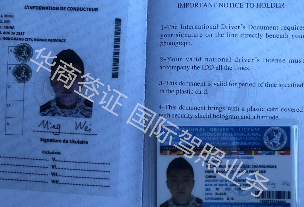 菲律宾国际驾照_.jpg